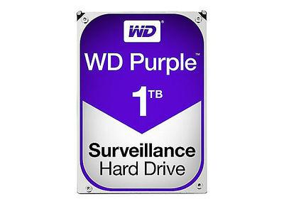 WD 1 TB 5400RPM 64MB SATA3 PURPLE 7/24 (WD10PURZ)